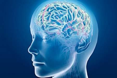 orientamento neuropsicofisiologico